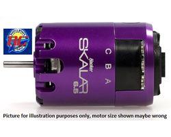 71217500 SKALAR 10 17.5 BL-Motor sensored